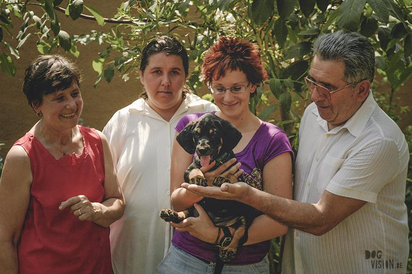 Augustus 2005 Erdelyi Kopo | transylvanian hound puppy | throwback thursday | www.DOGvision.eu